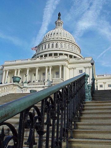 At the Capitol | Rabies - Bulletin - Europe